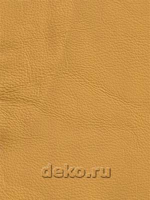 Люкс - натуральная кожа арт.95.3.5.77